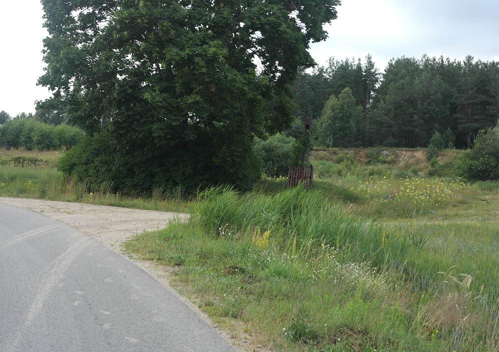 Trasy rowerowe białystok. skręt do lasu